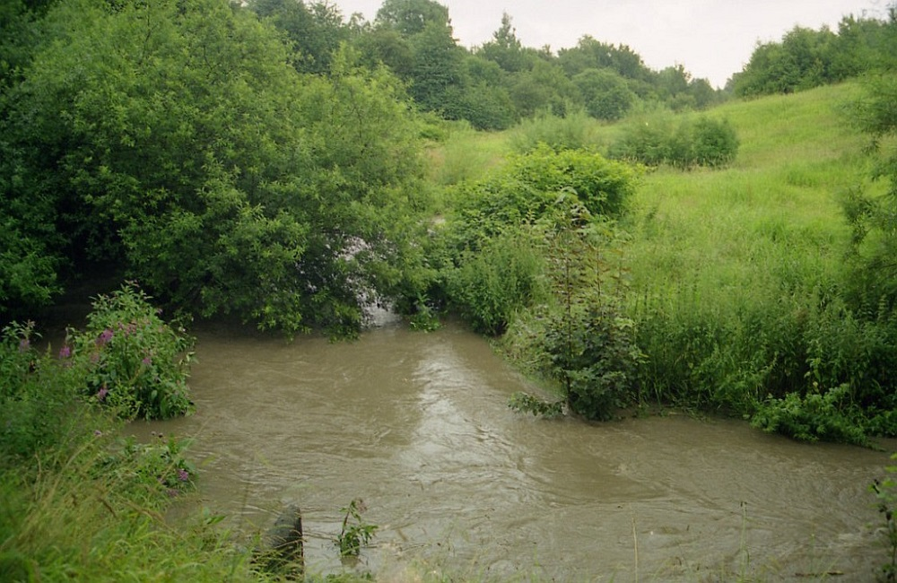 what is moston brook another music